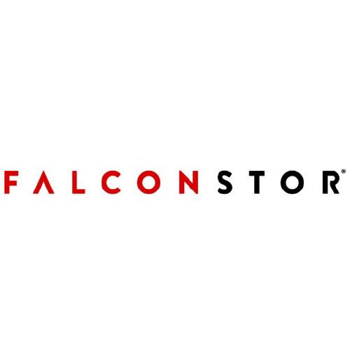 FalconStor Software Inc logo