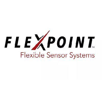 Flexpoint Sensor Systems Inc logo