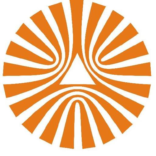 Naspers Ltd logo