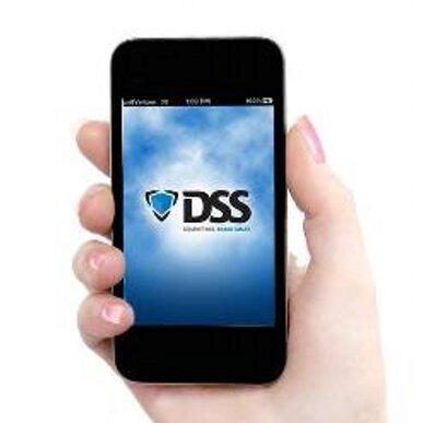 DSS logo