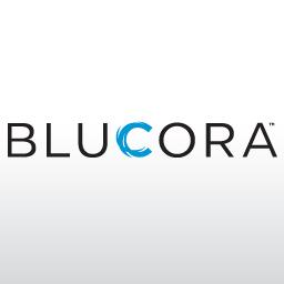 Blucora Inc logo