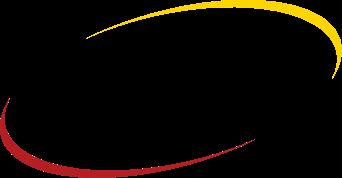 VirnetX Holding Corp logo