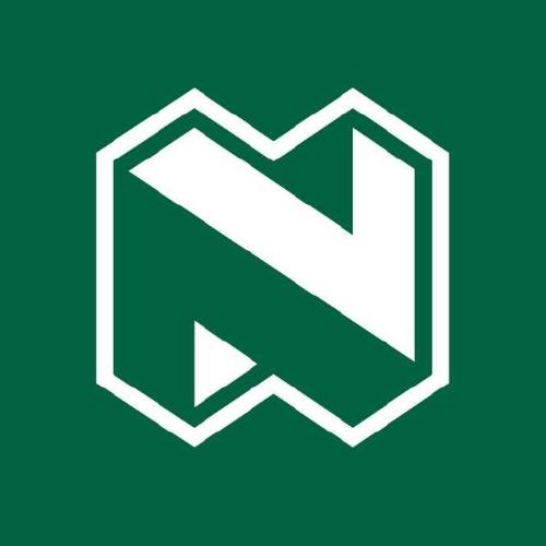 Nedbank Group Ltd logo