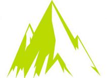 Champion Iron Ltd logo