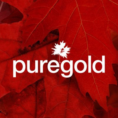 Pure Gold Mining Inc logo