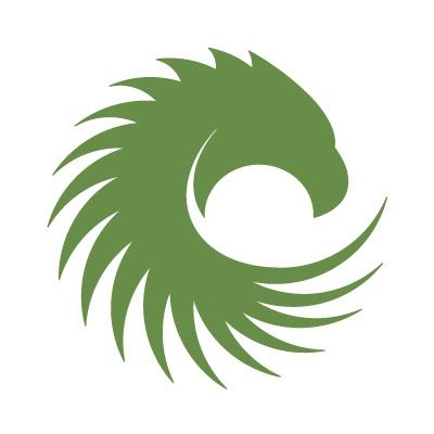 American Manganese Inc logo