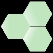 BioCorRx Inc logo