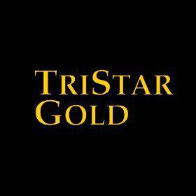 Tristar Gold Inc logo
