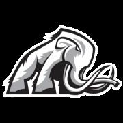 Mammoth Energy Services Inc logo