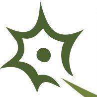 NervGen Pharma Corp logo