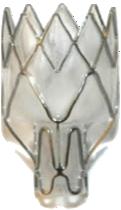 Pulmonx Corp logo